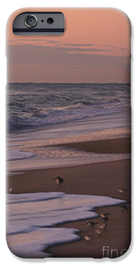 Beach IPhone 6 Case featuring the photograph Morning Birds At The Beach by Nadine Rippelmeyer