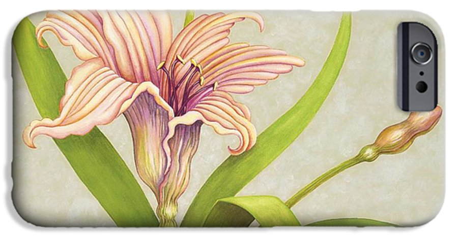 Soft Peach Lily In A Pose IPhone 6 Case featuring the painting Peach Lily by Carol Sabo
