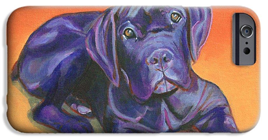 Portrait Of A Black Puppy Of Cane Corso Italian Mastiff Iphone 6