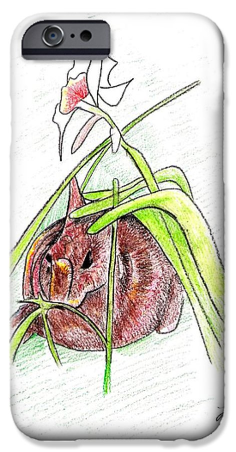 Rabbit IPhone 6 Case featuring the drawing Rabbit by Loretta Nash