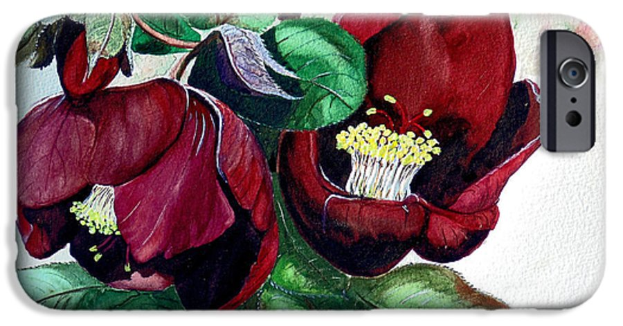 Red Helleborous Painting Flower Painting  Botanical Painting Watercolor Painting Original Painting Floral Painting Flower Painting Red Painting  Greeting Painting IPhone 6 Case featuring the painting Red Helleborous by Karin Dawn Kelshall- Best