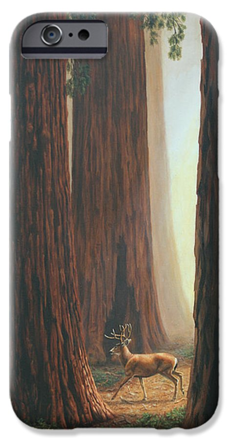 Deer IPhone 6 Case featuring the painting Sequoia Blacktail Deer Phone Case by Crista Forest