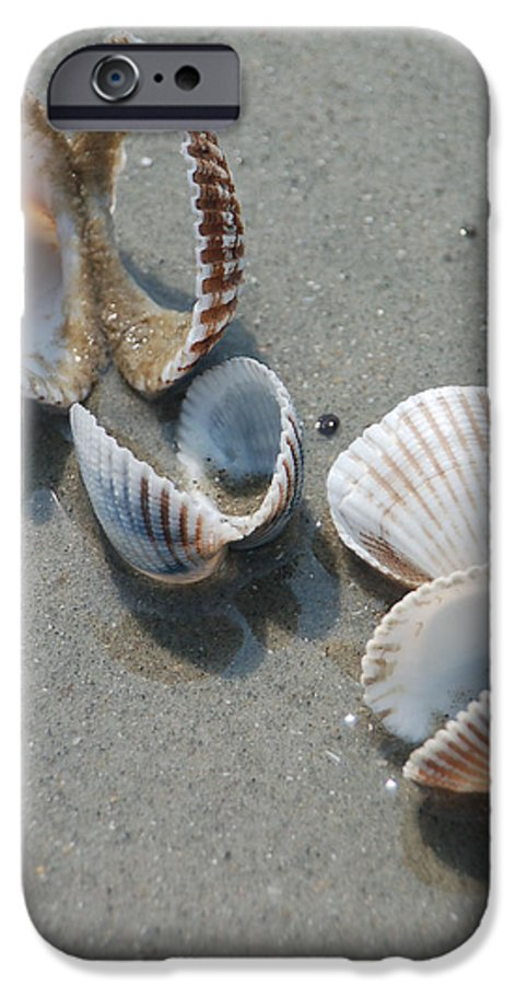 Sea Shell IPhone 6 Case featuring the photograph She Sells Sea Shells by Suzanne Gaff