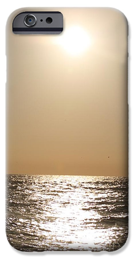 Silver IPhone 6 Case featuring the photograph Silver And Gold by Nadine Rippelmeyer