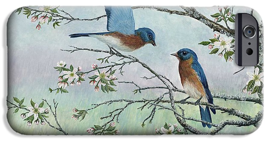 Bluebirds; Trees; Wildlife IPhone 6 Case featuring the painting The Gift by Ben Kiger