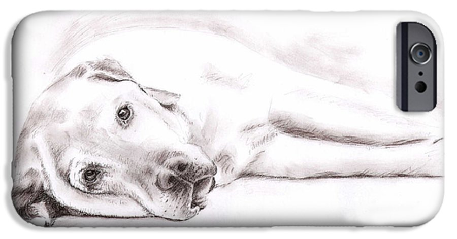 Dog IPhone 6 Case featuring the drawing Tired Labrador by Nicole Zeug