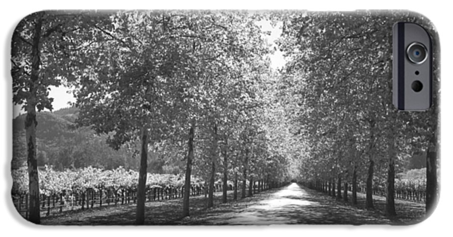 Black And White IPhone 6 Case featuring the photograph Wine Country Napa Black And White by Suzanne Gaff