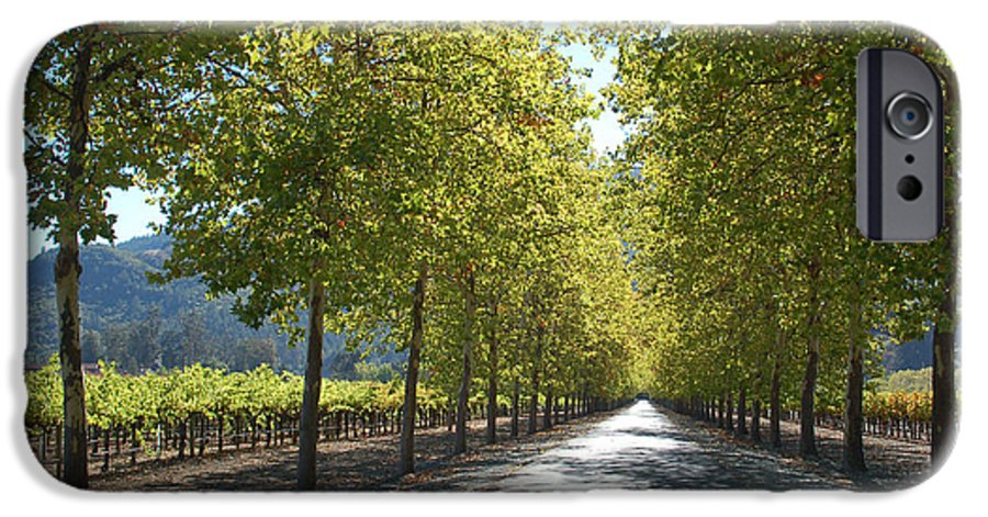 Napa IPhone 6 Case featuring the photograph Wine Country Napa by Suzanne Gaff
