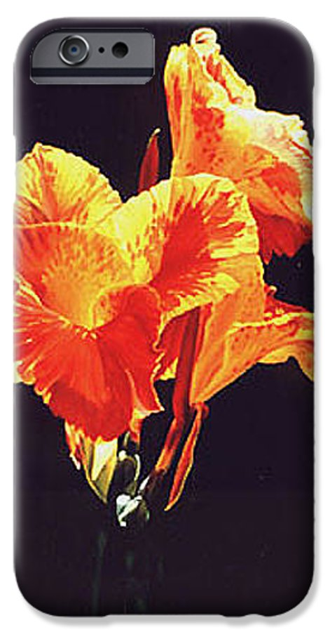 Floral IPhone 6 Case featuring the painting Yellow Canna by Gary Hernandez