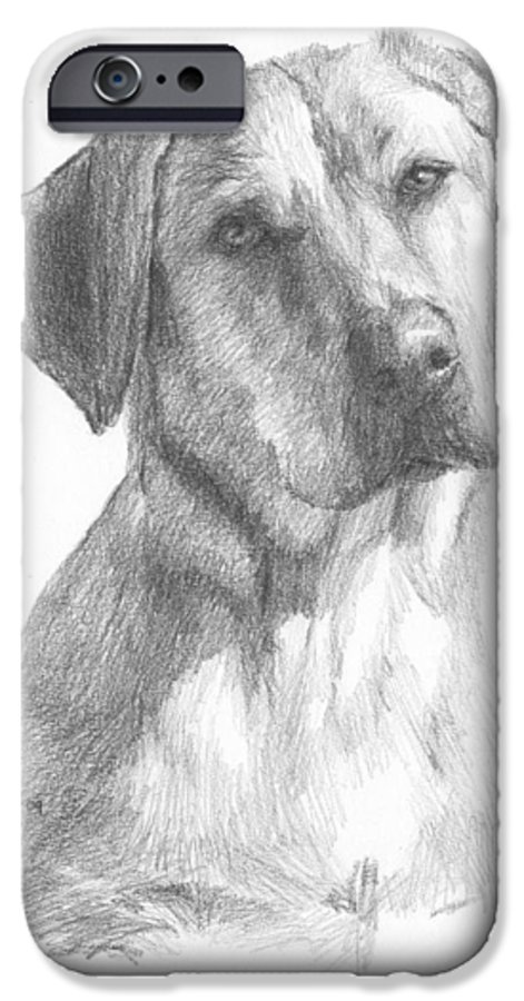<a Href=http://miketheuer.com>www.miketheuer.com</a> Yellow Lab Dog Pencil Portrait IPhone 6 Case featuring the drawing Yellow Lab Dog Pencil Portrait by Mike Theuer