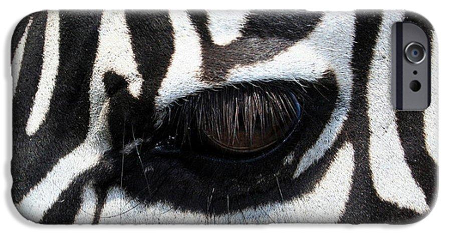 Zebra IPhone 6 Case featuring the photograph Zebra Eye by Linda Sannuti