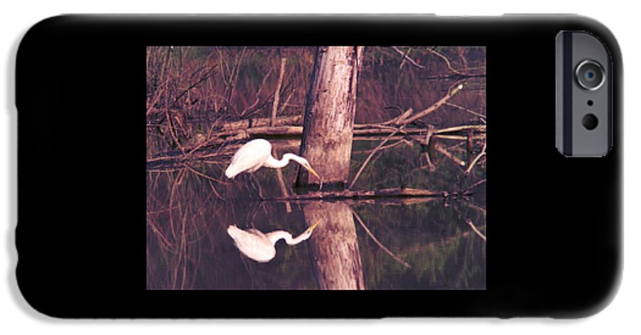 Great Egret IPhone 6 Case featuring the photograph 070406-17 by Mike Davis