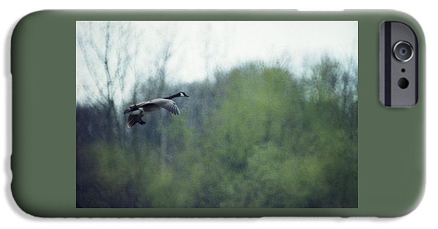 Canada Goose IPhone 6 Case featuring the photograph 070406-40 by Mike Davis