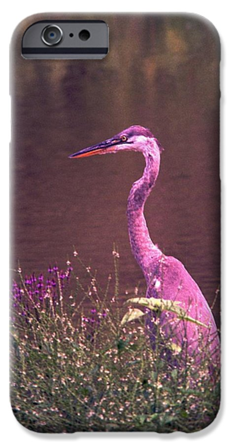 Great Blue Heron IPhone 6 Case featuring the photograph 080706-12 by Mike Davis