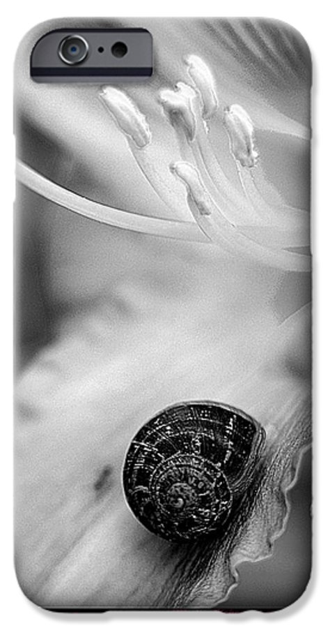 Clay IPhone 6 Case featuring the photograph B And White Floral With Snail by Clayton Bruster