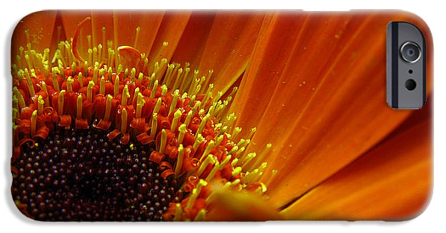 Clay IPhone 6 Case featuring the photograph Floral by Clayton Bruster