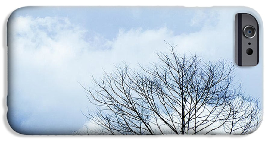 Winter Fall White Sky IPhone 6 Case featuring the photograph Winter Tree by Adelista J