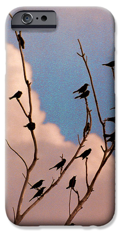 Birds IPhone 6 Case featuring the photograph 19 Blackbirds by Steve Karol