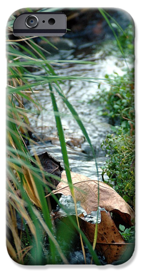 Stream IPhone 6 Case featuring the photograph Untitled by Kathy Schumann