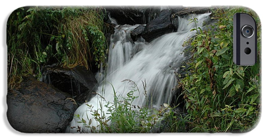 Nature IPhone 6 Case featuring the photograph Untitled by Kathy Schumann
