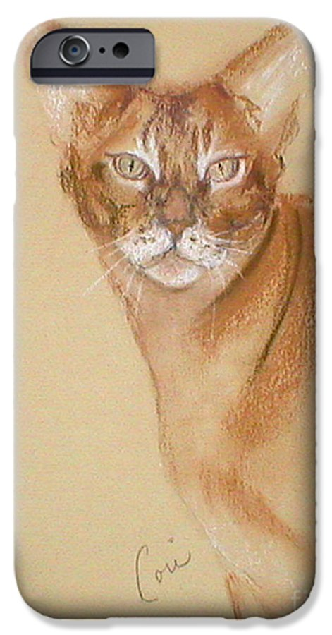 Pastel IPhone 6 Case featuring the drawing Abyssinian by Cori Solomon