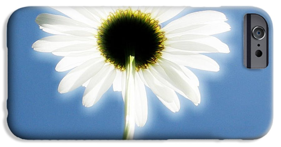 Daisy IPhone 6 Case featuring the photograph Achievement by Idaho Scenic Images Linda Lantzy