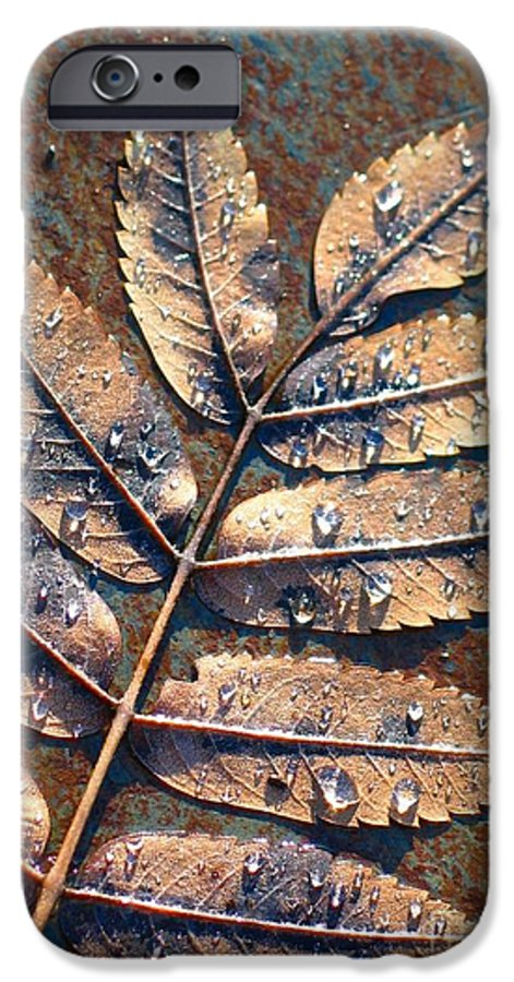 Rain IPhone 6 Case featuring the photograph After The Rain by Idaho Scenic Images Linda Lantzy