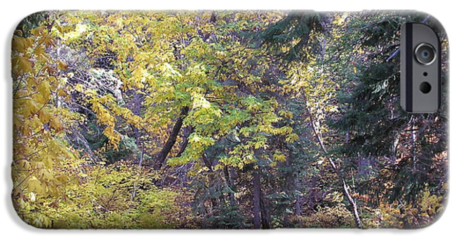 Autumn Photographs IPhone 6 Case featuring the photograph Autum Colors by Louise Magno