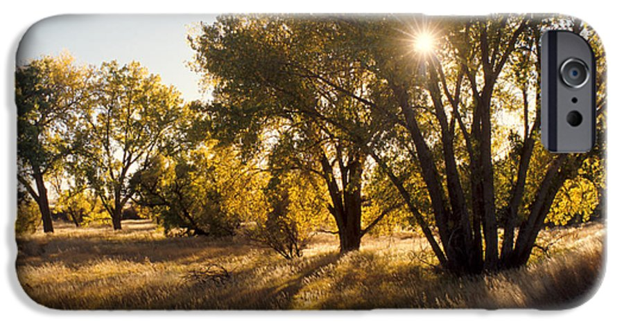 Fall IPhone 6 Case featuring the photograph Autum Sunburst by Jerry McElroy