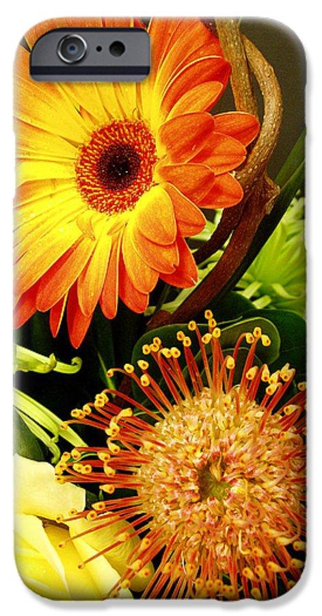 Autumn IPhone 6 Case featuring the photograph Autumn Flower Arrangement by Nancy Mueller