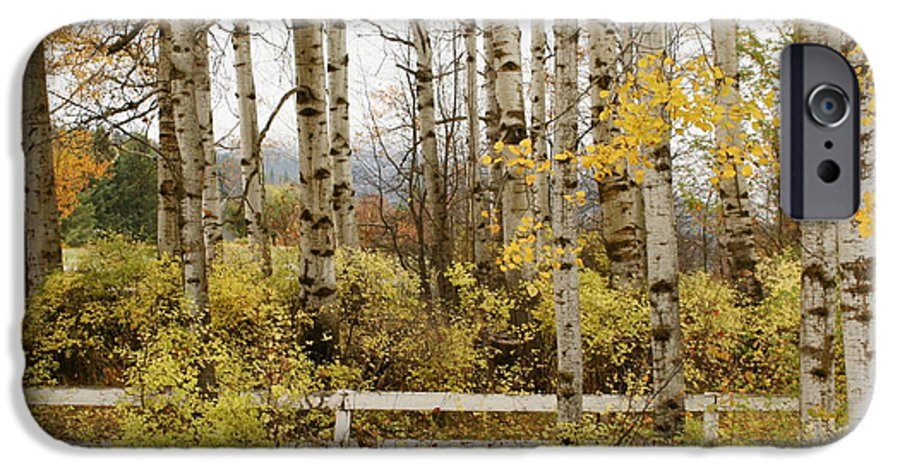 Grove IPhone 6 Case featuring the photograph Autumn Grove by Idaho Scenic Images Linda Lantzy