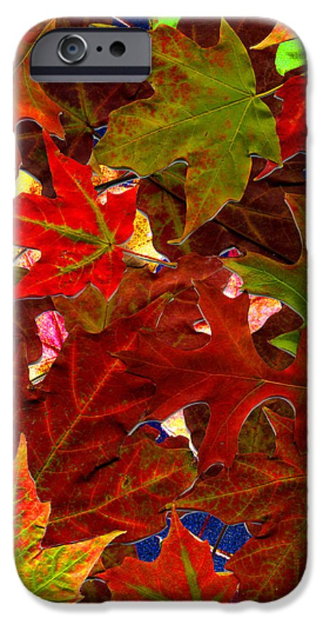 Collage IPhone 6 Case featuring the photograph Autumn Leaves by Nancy Mueller