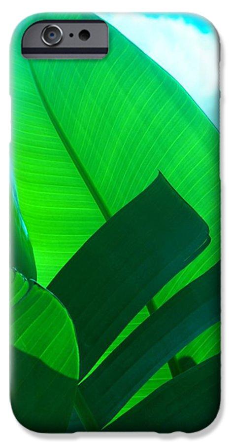 Botanical IPhone 6 Case featuring the photograph Banana Aqua by Florene Welebny