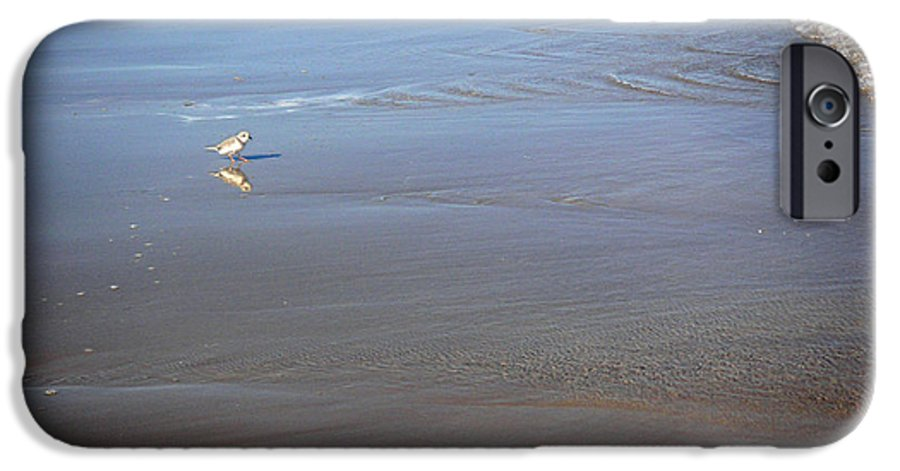 Nature IPhone 6 Case featuring the photograph Being One With The Gulf - Cautious by Lucyna A M Green