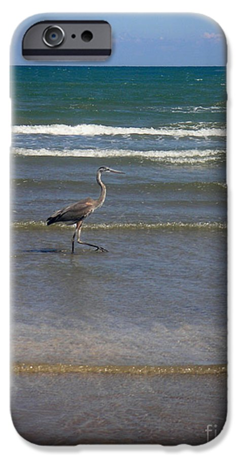 Nature IPhone 6 Case featuring the photograph Being One With The Gulf - In Step by Lucyna A M Green