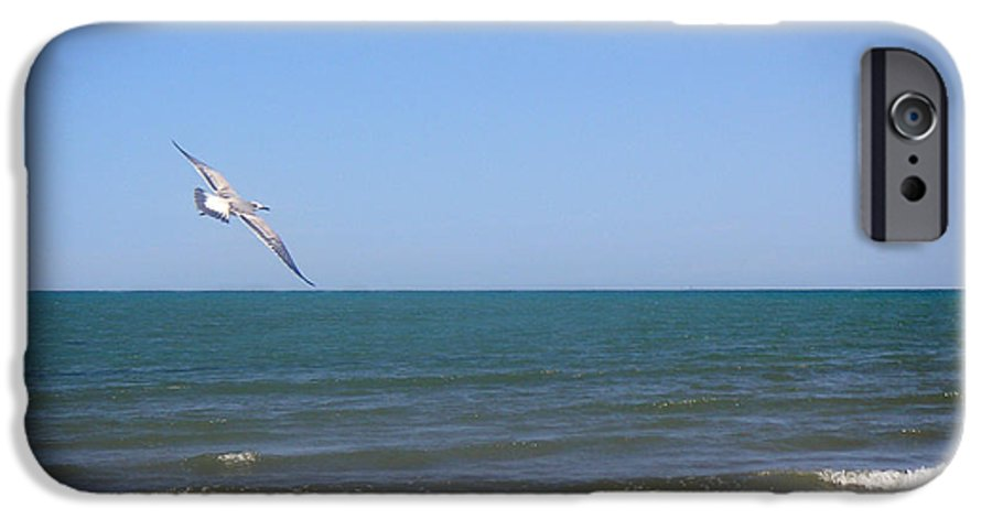 Nature IPhone 6 Case featuring the photograph Being One With The Gulf - Soaring by Lucyna A M Green
