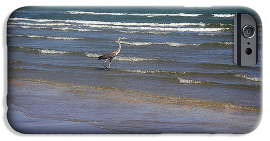 Nature IPhone 6 Case featuring the photograph Being One With The Gulf - Wading by Lucyna A M Green