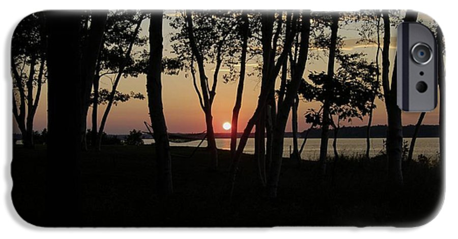Birch IPhone 6 Case featuring the photograph Birches Watch The Sunset by Faith Harron Boudreau