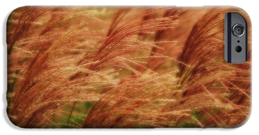 Win IPhone 6 Case featuring the photograph Blowing In The Wind by Gaby Swanson