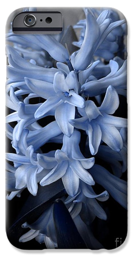 Blue IPhone 6 Case featuring the photograph Blue Hyacinth by Shelley Jones