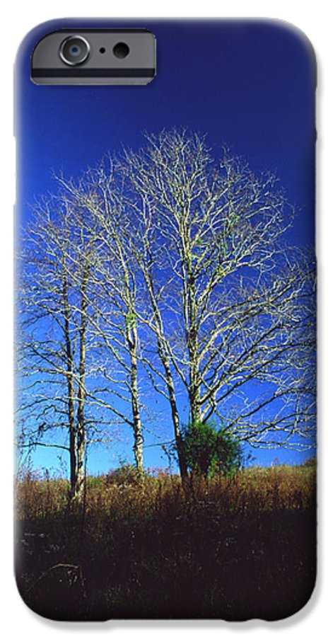 Landscape IPhone 6 Case featuring the photograph Blue Tree In Tennessee by Randy Oberg