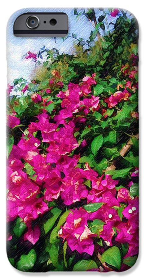 Bougainvillea IPhone 6 Case featuring the photograph Bougainvillea by Sandy MacGowan