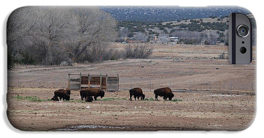 Buffalo IPhone 6 Case featuring the photograph Buffalo New Mexico by Rob Hans