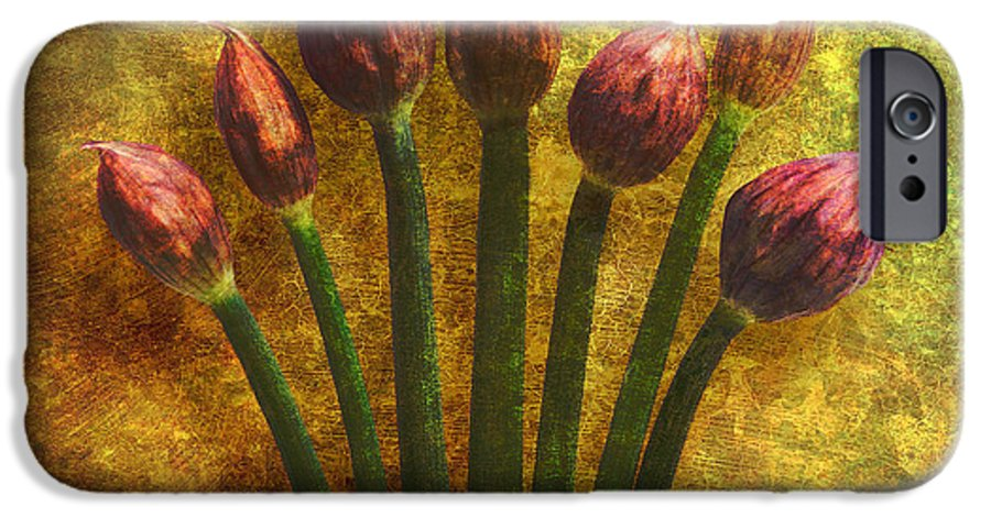 Texture IPhone 6 Case featuring the digital art Chives Buds by Digital Crafts