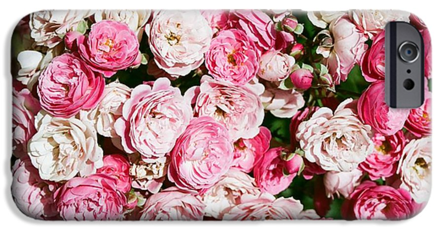 Rose IPhone 6 Case featuring the photograph Cluster Of Roses by Dean Triolo