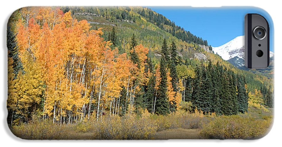 Aspen IPhone 6 Case featuring the photograph Colorado Gold by Jerry McElroy