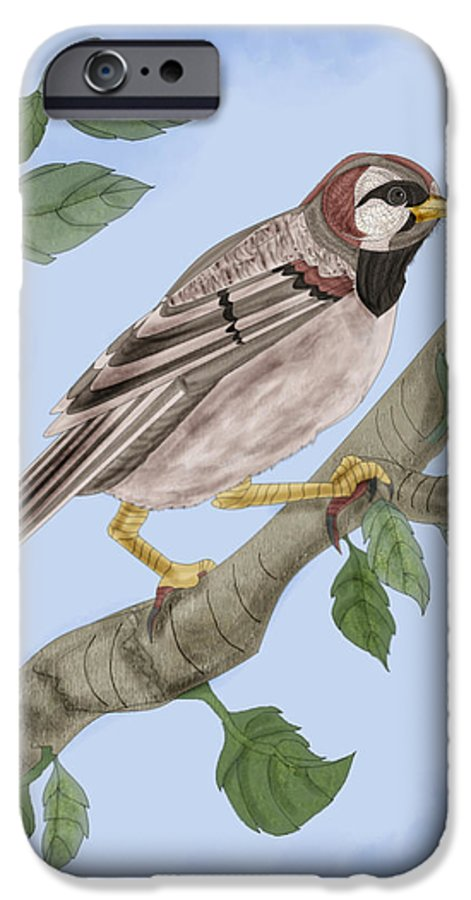 Sparrow IPhone 6 Case featuring the painting Common House Sparrow by Anne Norskog