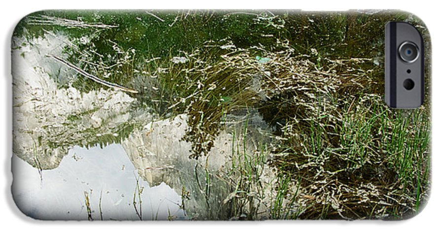 Mirror Lake IPhone 6 Case featuring the photograph Confusion by Kathy McClure