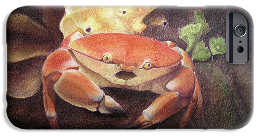 Animals IPhone 6 Case featuring the painting Coral Crab by Adam Johnson