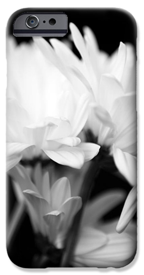 Floral IPhone 6 Case featuring the photograph Daises In Black And White by Ayesha Lakes